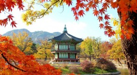 học tiếng Hàn tại Hà Nội