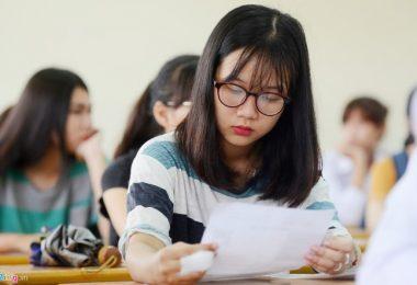 Dịch vụ dạy kèm tại nhà huyện Ba Vì